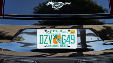 How To Locate The Owner Of A License Plate For Free